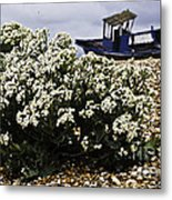Dungeness Seascape Metal Print by Lesley Rigg