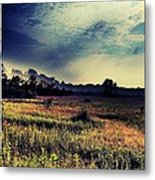 Dusk In The Pasture Metal Print by Garren Zanker