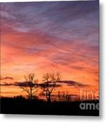 Dust Bunnies At Sundown Metal Print
