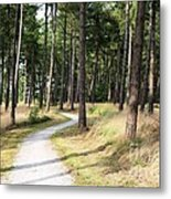 Dutch Country Bicycle Path Metal Print