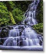 Eads Creek Falls Metal Print