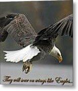 Eagle 2 Metal Print