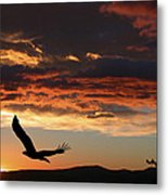 Eagle At Sunset Metal Print