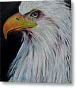 Eagle Eye Metal Print by Jeanne Fischer