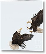 Eagle Fight Metal Print