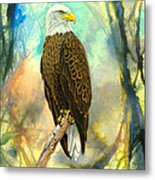 Eagle In Abstract Metal Print
