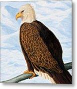 Eagle In Alaska Metal Print