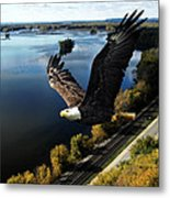Eagle Over Mississippi  Metal Print