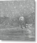 Eagle Over Water Metal Print