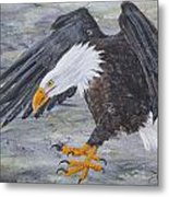 Eagle Study 2 Metal Print