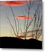 Eagle Sunset Metal Print