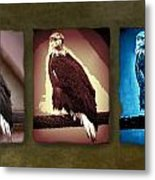 Eagle Triad Metal Print