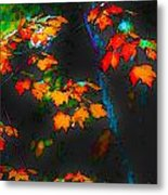Early Autum Metal Print