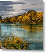 Early Autumn Along The Androscoggin River Metal Print by Bob Orsillo