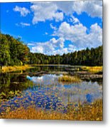 Early Autumn At Fly Pond - Old Forge New York Metal Print
