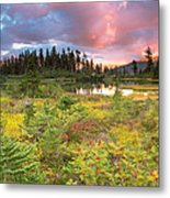 Early Autumn Meadow Sunset At Mt Baker Metal Print
