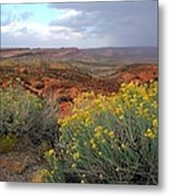 Early Evening Landscape At Arches National Park Metal Print