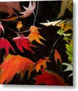 Early Fall Metal Print