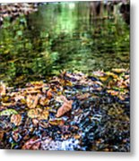 Early Fall Number Two Metal Print