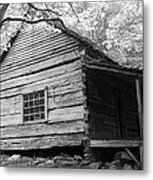 Early Homestead -3 Metal Print by Janice Sakry