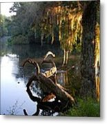 Early Light And Color Metal Print