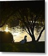 Early Morning Delight Metal Print
