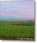 Early Morning. Field Metal Print