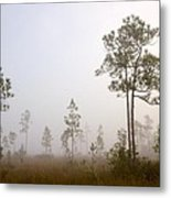 Early Morning Fog Metal Print
