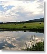 Early Morning On The Pond 3 Metal Print
