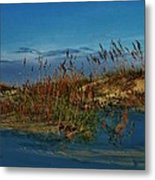 Early Morning Seascape Metal Print