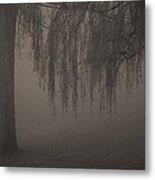 Early Morning Silhoette Metal Print