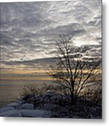 Early Morning Tree Silhouette On Silver Sky Metal Print