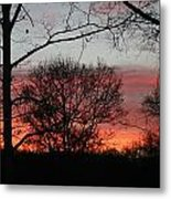 Early One Morning IIi Metal Print