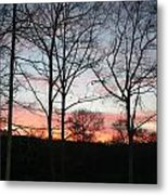 Early One Morning Iv Metal Print