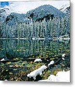 Early Snow At Nymph Lake Metal Print