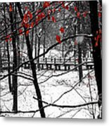 Early Snow 4 Metal Print