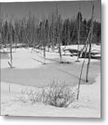 Early Spring Northern Maine 4 Metal Print