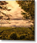 Early Spring Rain Metal Print
