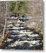 Early Spring Thaw Metal Print