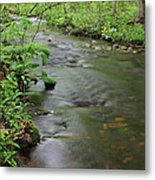 Early Summer At Borden Brook Metal Print by Andrew Pacheco