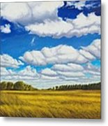 Early Summer Clouds Metal Print