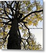 Earth Day Special - Ancient Tree Metal Print