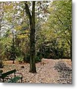 Earth Day Special - Bench In The Park Metal Print