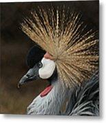 East African Crowned Crane 2 Painterly Metal Print