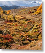 East Of Crowheart Metal Print