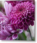 Easter Bouquet Flowers Mums And Dahlia Metal Print