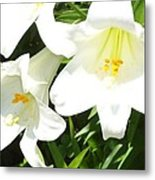 Easter Lilies At Longue Vue Metal Print by Katie Spicuzza