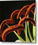 Easter Lily Detail Metal Print