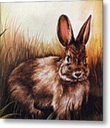 Eastern Cottontail Rabbit Metal Print
