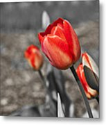 Ebullience Metal Print